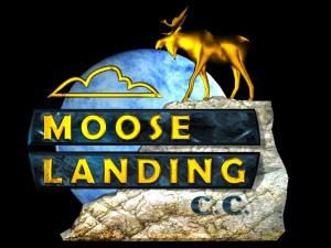 moose_landing_front[1]